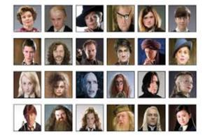 Harry Potter quiz !!!